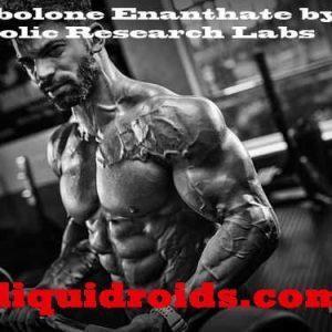 Buy Boldenone 500 in USA